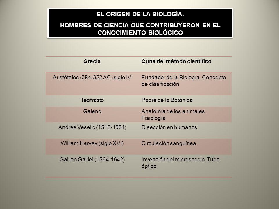 GreciaCuna del método científico Aristóteles (384-322 AC) siglo IVFundador de la Biología. Concepto de clasificación TeofrastoPadre de la Botánica Gal