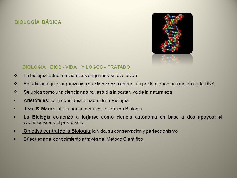 BIOLOGÍA BÁSICA BIOLOGÍA BIOS - VIDA Y LOGOS – TRATADO La biología estudia la vida; sus orígenes y su evolución Estudia cualquier organización que tie
