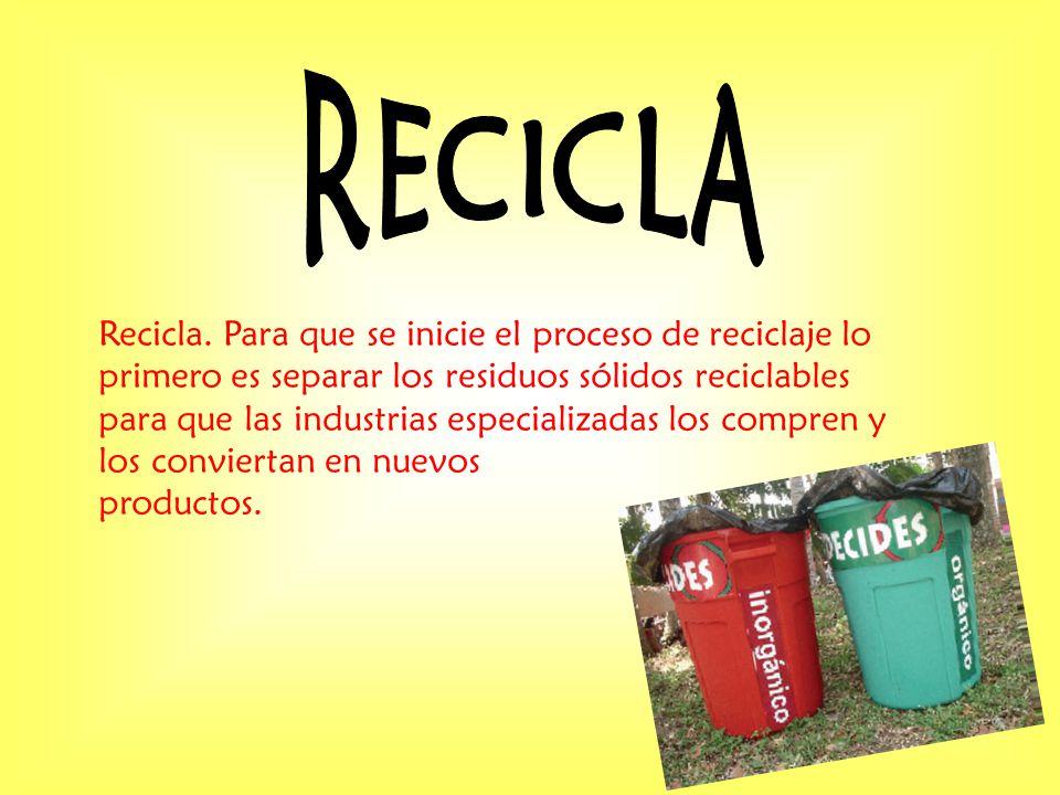 Recicla. Para que se inicie el proceso de reciclaje lo primero es separar los residuos sólidos reciclables para que las industrias especializadas los