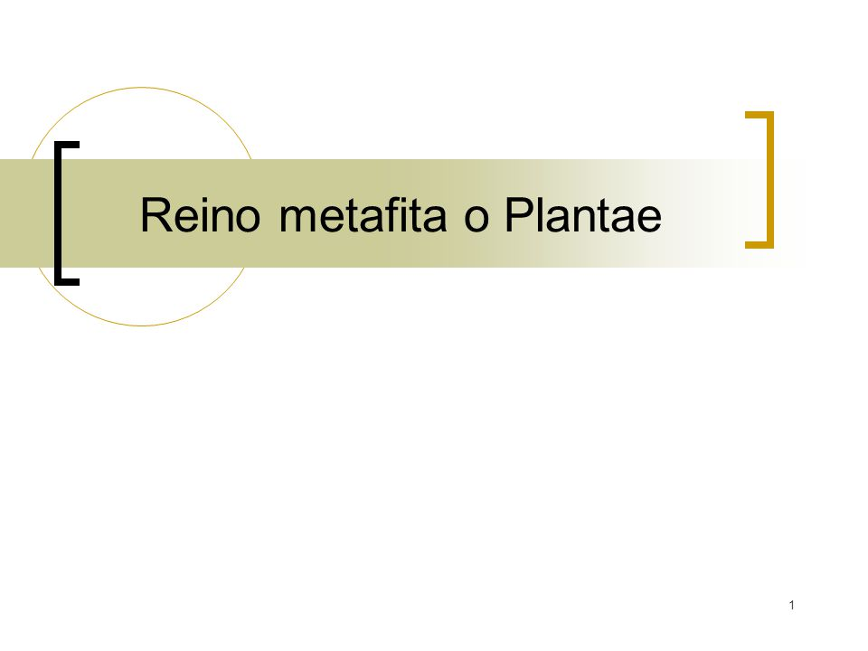 1 Reino metafita o Plantae