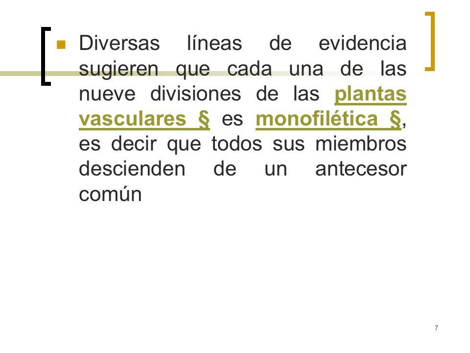 7 Diversas líneas de evidencia sugieren que cada una de las nueve divisiones de las plantas vasculares § es monofilética §, es decir que todos sus mie