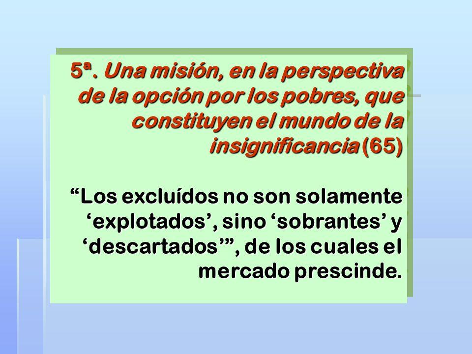 5ª. Una misión, en la perspectiva de la opción por los pobres, que constituyen el mundo de la insignificancia (65) Los excluídos no son solamente expl
