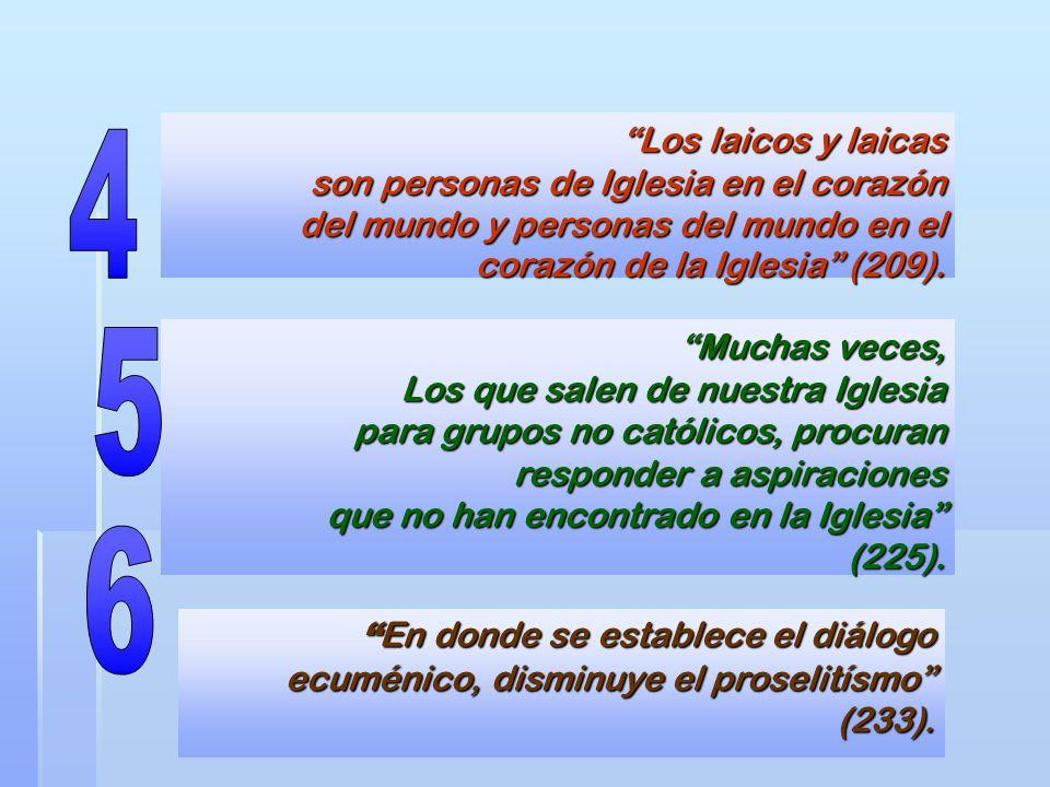 Los laicos y laicas son personas de Iglesia en el corazón del mundo y personas del mundo en el corazón de la Iglesia (209). Muchas veces, Los que sale