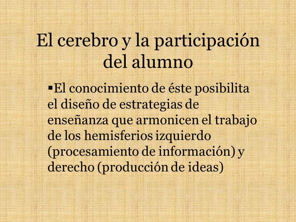El cerebro y la participación del alumno El conocimiento de éste posibilita el diseño de estrategias de enseñanza que armonicen el trabajo de los hemisferios izquierdo (procesamiento de información) y derecho (producción de ideas)