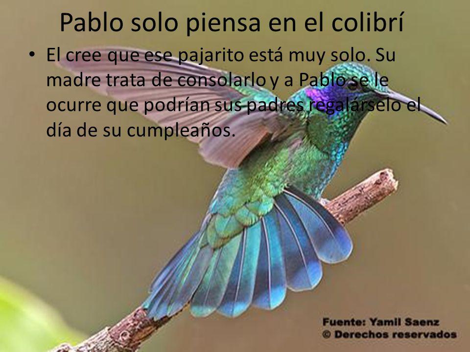 Pablo solo piensa en el colibrí El cree que ese pajarito está muy solo. Su madre trata de consolarlo y a Pablo se le ocurre que podrían sus padres reg