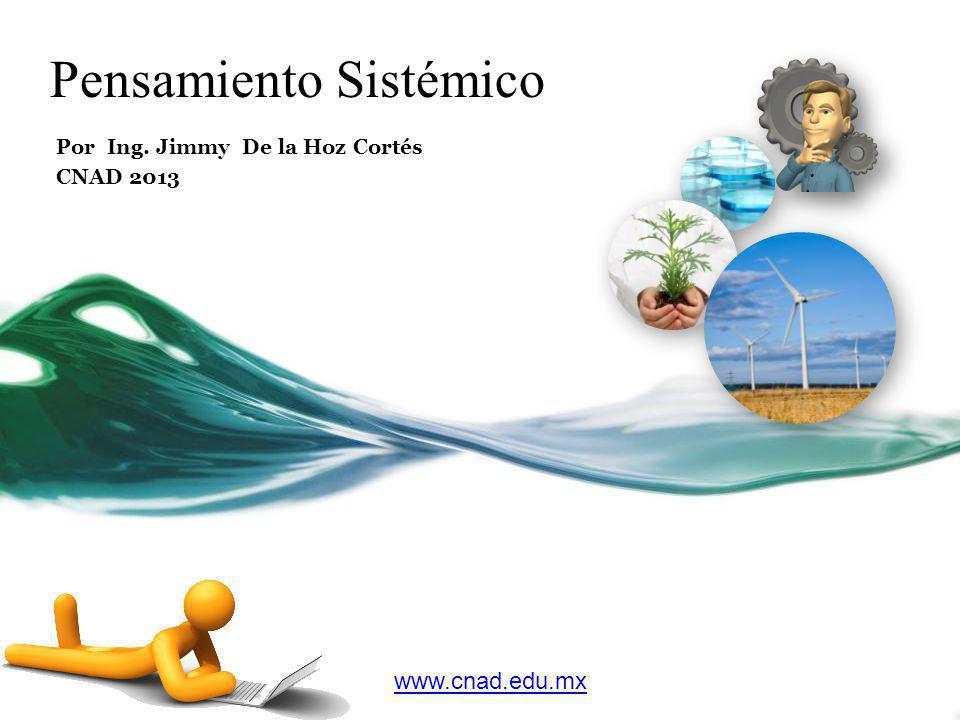 Pensamiento Sistémico Por Ing. Jimmy De la Hoz Cortés CNAD 2013 www.cnad.edu.mx