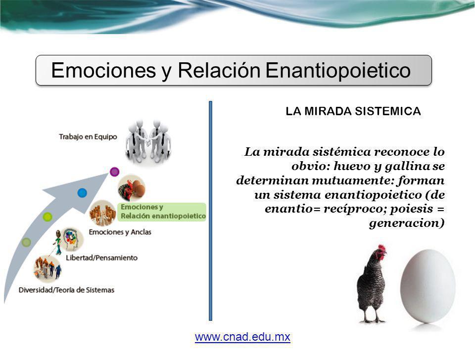 Emociones y Relación Enantiopoietico www.cnad.edu.mx LA MIRADA SISTEMICA La mirada sistémica reconoce lo obvio: huevo y gallina se determinan mutuamen