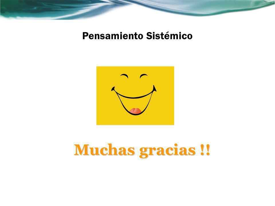 Pensamiento Sistémico Muchas gracias !!