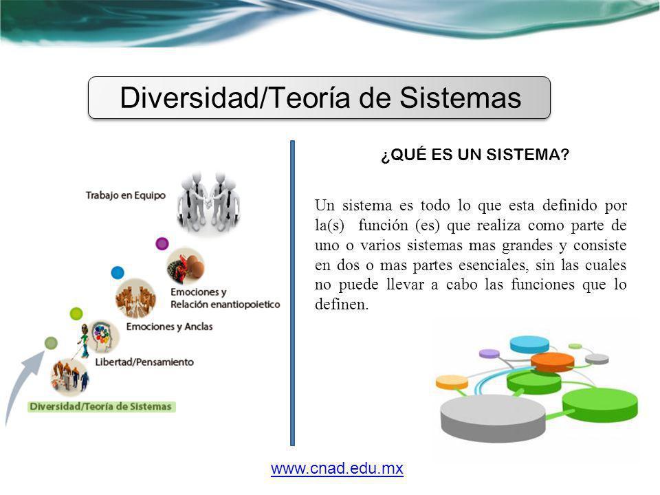 Diversidad/Teoría de Sistemas ¿QUÉ ES UN SISTEMA? Un sistema es todo lo que esta definido por la(s) función (es) que realiza como parte de uno o vario