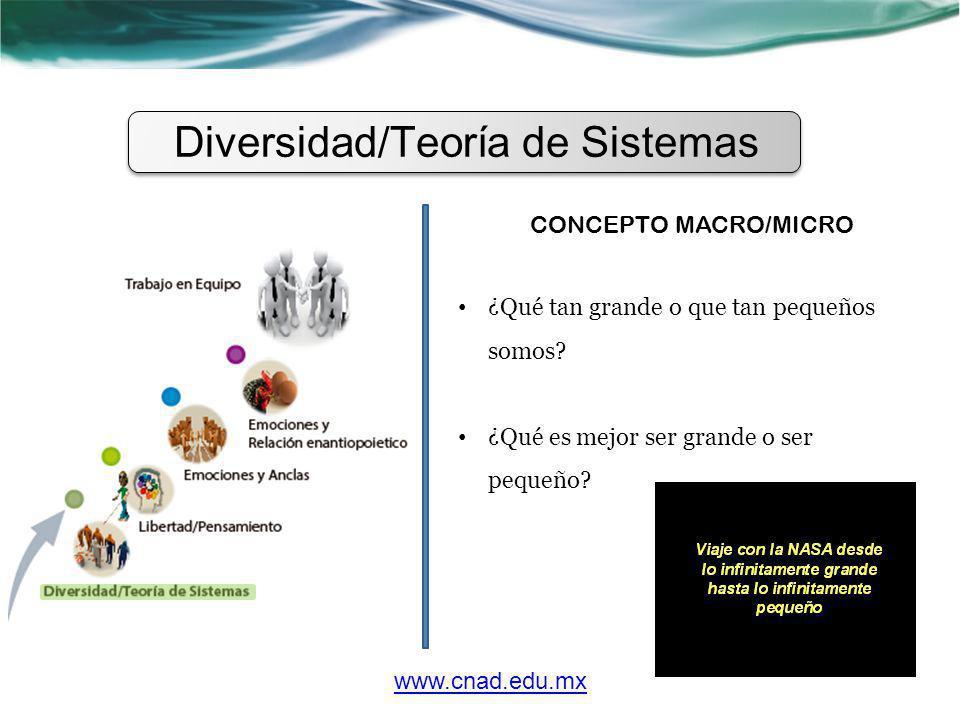 Diversidad/Teoría de Sistemas CONCEPTO MACRO/MICRO ¿Qué tan grande o que tan pequeños somos? ¿Qué es mejor ser grande o ser pequeño? www.cnad.edu.mx