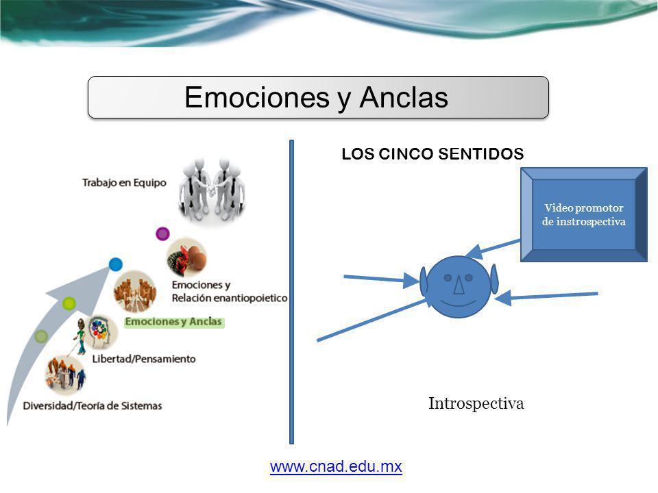 Emociones y Anclas LOS CINCO SENTIDOS www.cnad.edu.mx Introspectiva Video promotor de instrospectiva