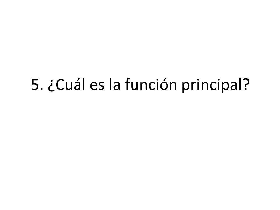 5. ¿Cuál es la función principal?