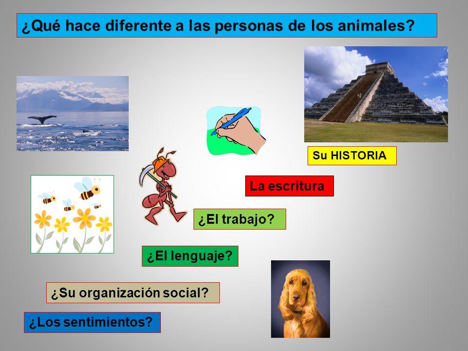 ¿El lenguaje? ¿Los sentimientos? ¿Su organización social? ¿El trabajo? La escritura Su HISTORIA