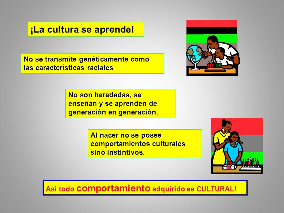 ¡La cultura se aprende.