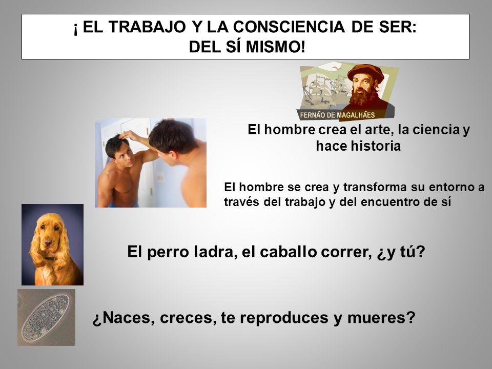 ¡ EL TRABAJO Y LA CONSCIENCIA DE SER: DEL SÍ MISMO.