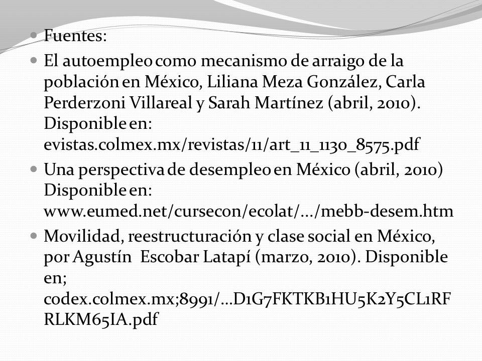 Fuentes: El autoempleo como mecanismo de arraigo de la población en México, Liliana Meza González, Carla Perderzoni Villareal y Sarah Martínez (abril,