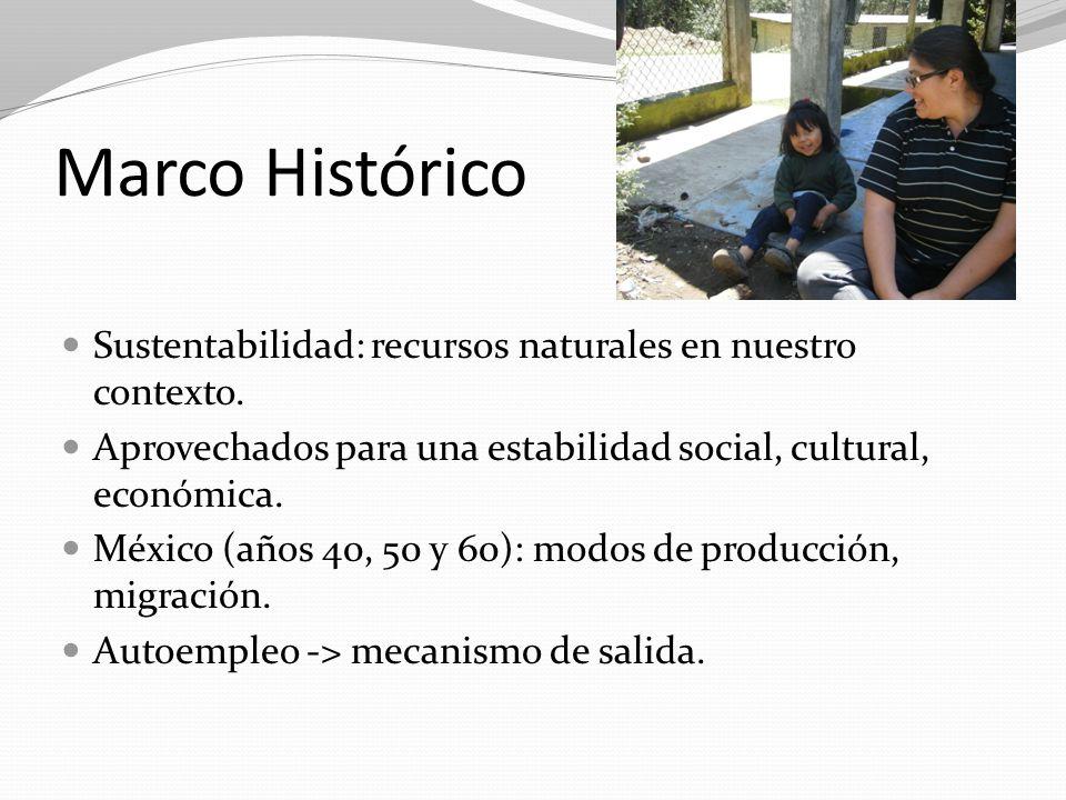 Marco Histórico Sustentabilidad: recursos naturales en nuestro contexto. Aprovechados para una estabilidad social, cultural, económica. México (años 4