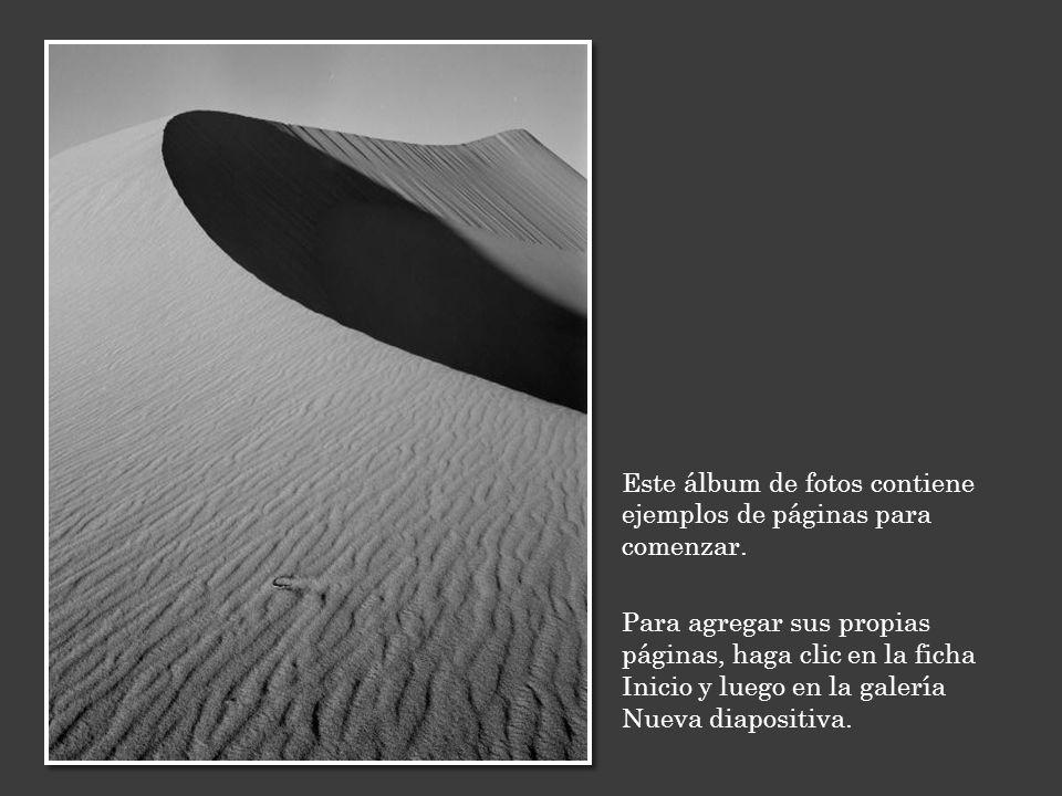 Este álbum de fotos contiene ejemplos de páginas para comenzar. Para agregar sus propias páginas, haga clic en la ficha Inicio y luego en la galería N