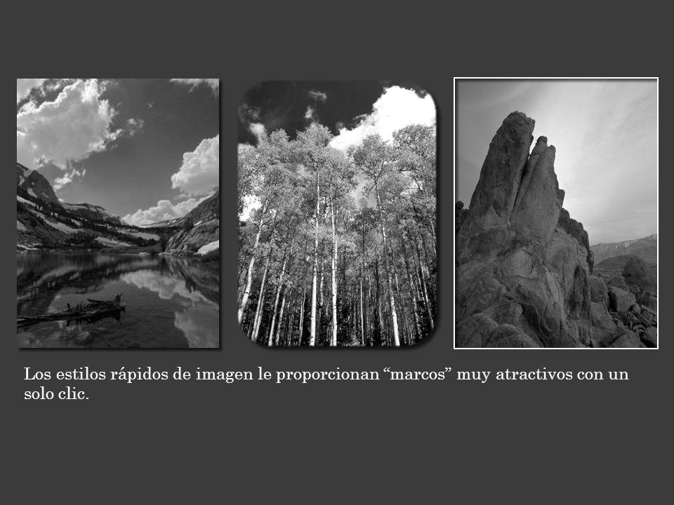 Los estilos rápidos de imagen le proporcionan marcos muy atractivos con un solo clic.