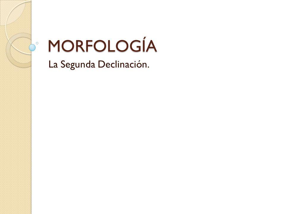 MORFOLOGÍA La Segunda Declinación.