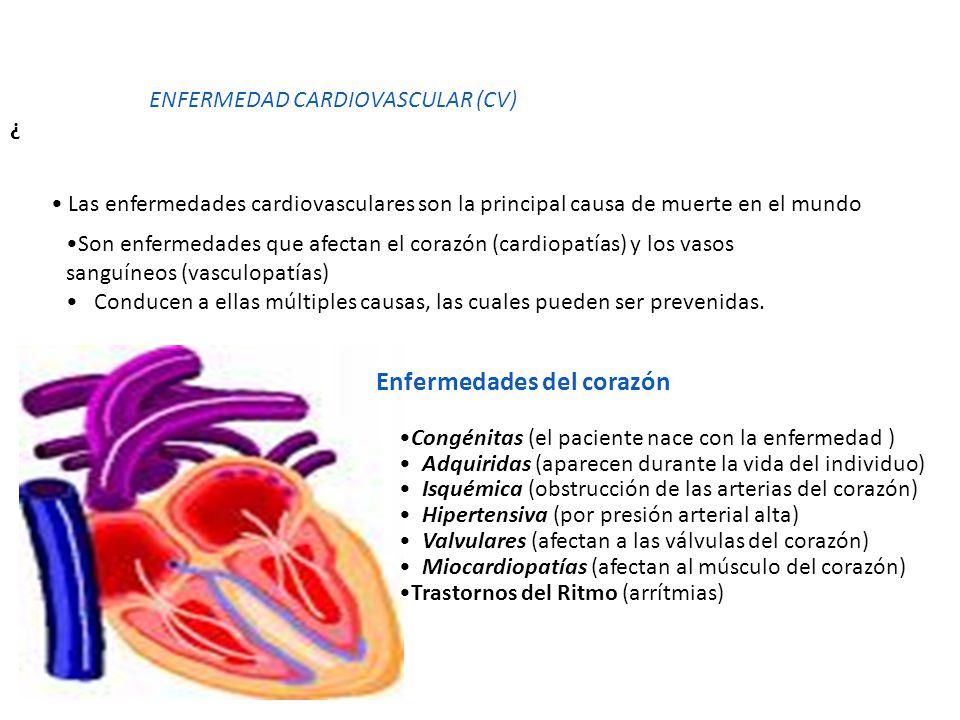 ¿ ENFERMEDAD CARDIOVASCULAR (CV) Las enfermedades cardiovasculares son la principal causa de muerte en el mundo Son enfermedades que afectan el corazó