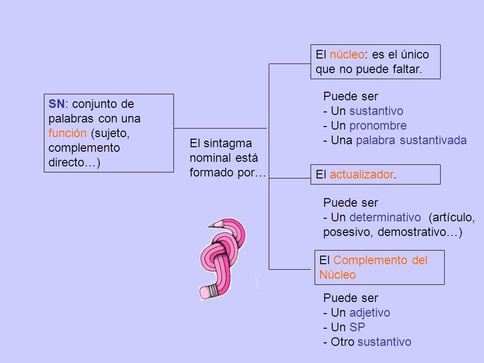 SN: conjunto de palabras con una función (sujeto, complemento directo…) El sintagma nominal está formado por… El núcleo: es el único que no puede faltar.
