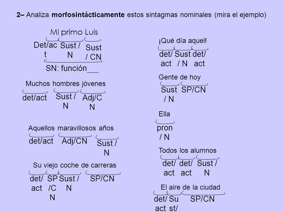 2– Analiza morfosintácticamente estos sintagmas nominales (mira el ejemplo) Det/ac t Sust / N SN: función ___ Sust / CN Mi primo Luis Muchos hombres jóvenes Sust / N Aquellos maravillosos años ¡Qué día aquel.