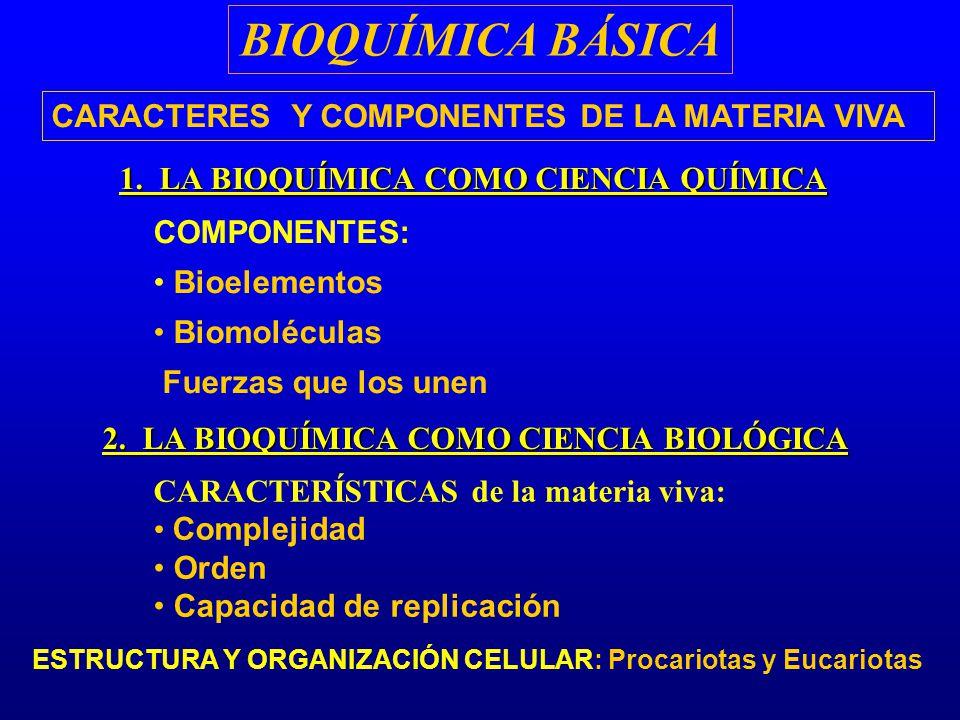 BIOQUÍMICA BÁSICA CARACTERES Y COMPONENTES DE LA MATERIA VIVA COMPONENTES: Bioelementos Biomoléculas Fuerzas que los unen 1. LA BIOQUÍMICA COMO CIENCI