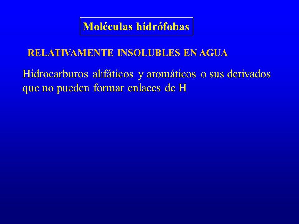 Moléculas hidrófobas RELATIVAMENTE INSOLUBLES EN AGUA Hidrocarburos alifáticos y aromáticos o sus derivados que no pueden formar enlaces de H