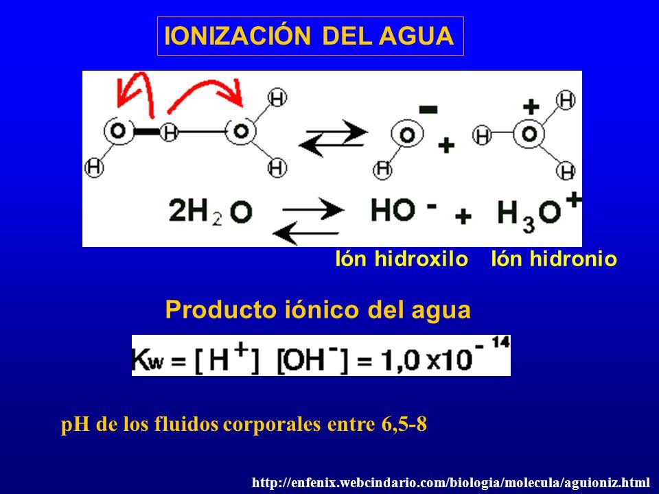 IONIZACIÓN DEL AGUA Ión hidroxilo Ión hidronio Producto iónico del agua pH de los fluidos corporales entre 6,5-8 http://enfenix.webcindario.com/biolog