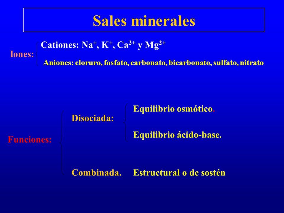 Sales minerales Iones: Cationes: Na +, K +, Ca 2+ y Mg 2+ Aniones: cloruro, fosfato, carbonato, bicarbonato, sulfato, nitrato Funciones: Disociada: Eq