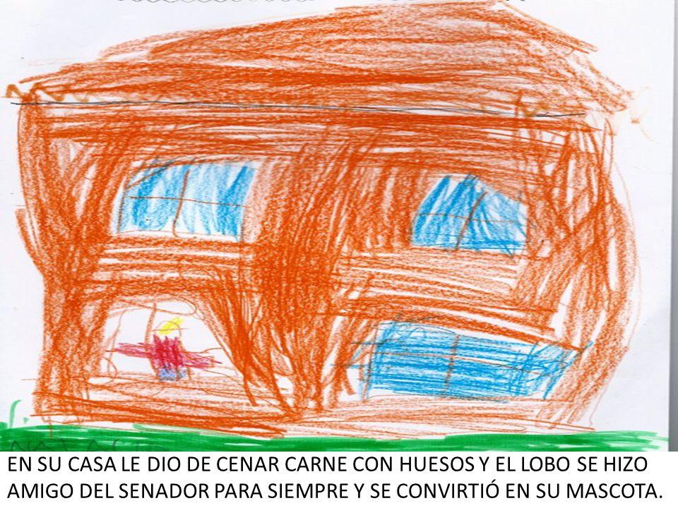EN SU CASA LE DIO DE CENAR CARNE CON HUESOS Y EL LOBO SE HIZO AMIGO DEL SENADOR PARA SIEMPRE Y SE CONVIRTIÓ EN SU MASCOTA.