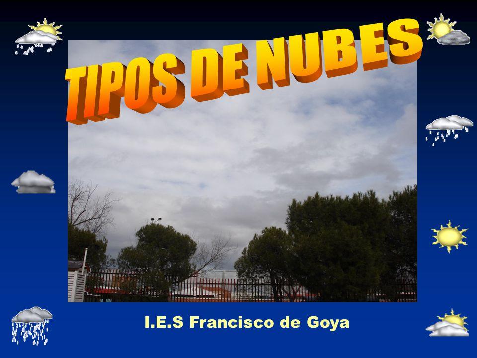 NUBES BAJAS Nimboestratos.Son de color gris oscuros y tienen una base irregular.