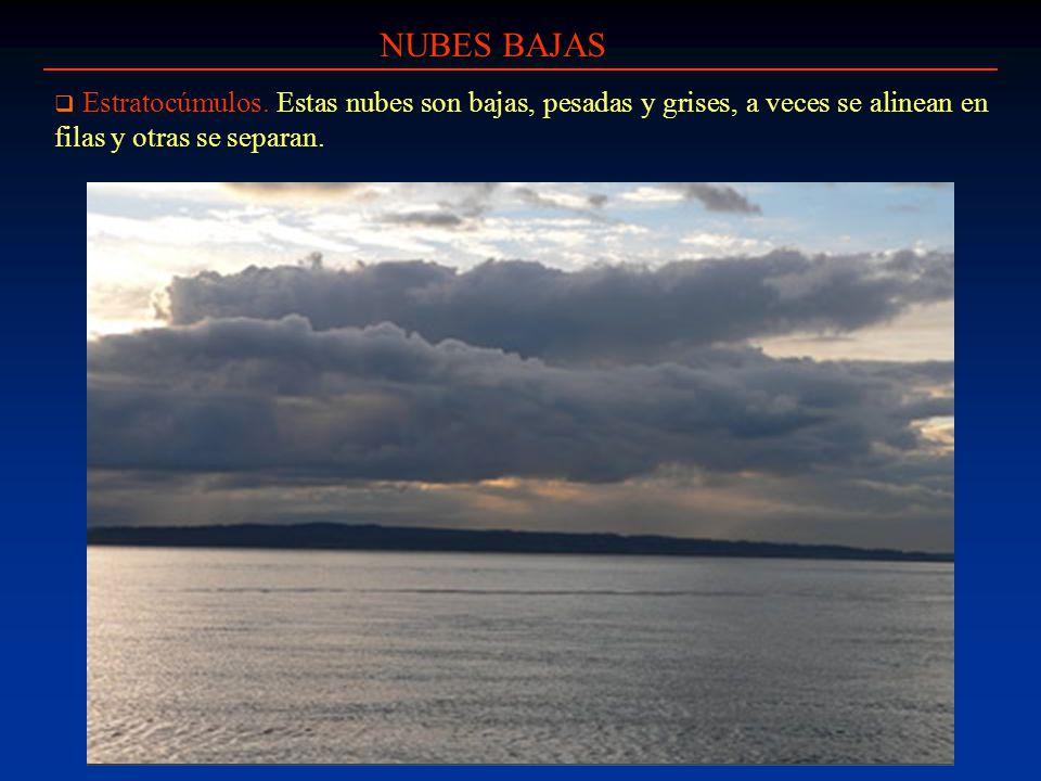NUBES BAJAS Estratocúmulos. Estas nubes son bajas, pesadas y grises, a veces se alinean en filas y otras se separan.