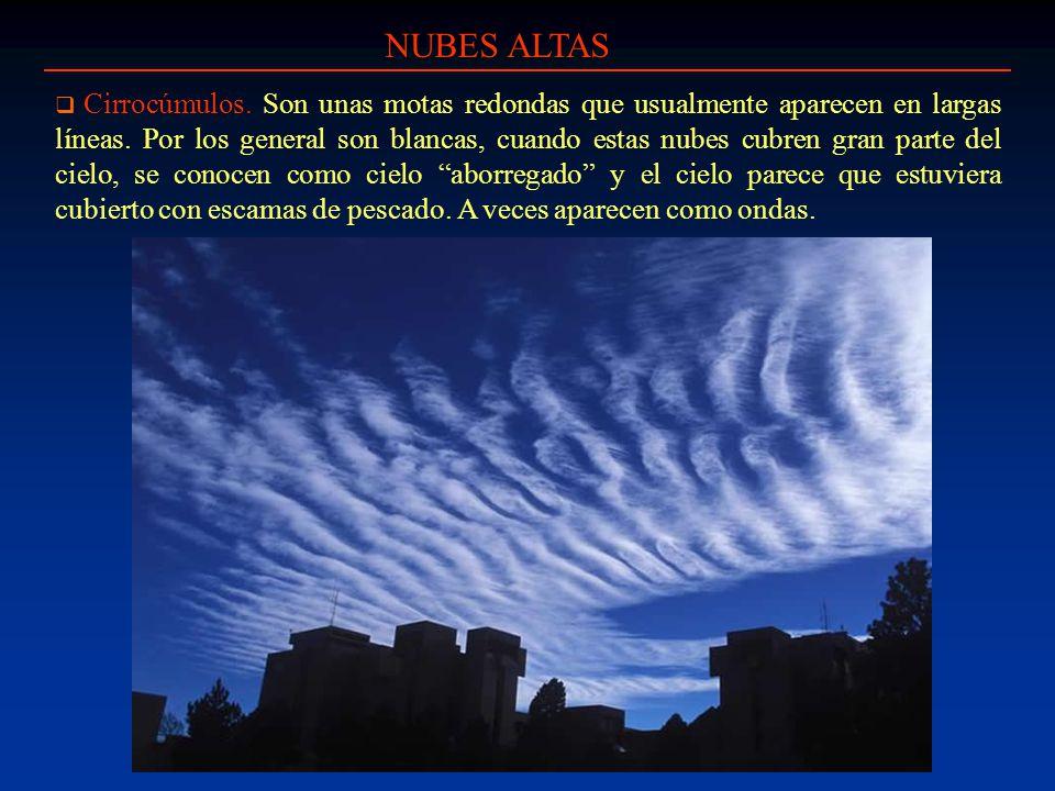 NUBES ALTAS Cirrocúmulos. Son unas motas redondas que usualmente aparecen en largas líneas. Por los general son blancas, cuando estas nubes cubren gra