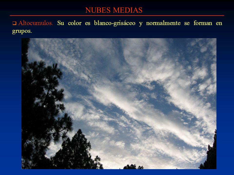 NUBES MEDIAS Altocumulos. Su color es blanco-grisáceo y normalmente se forman en grupos.