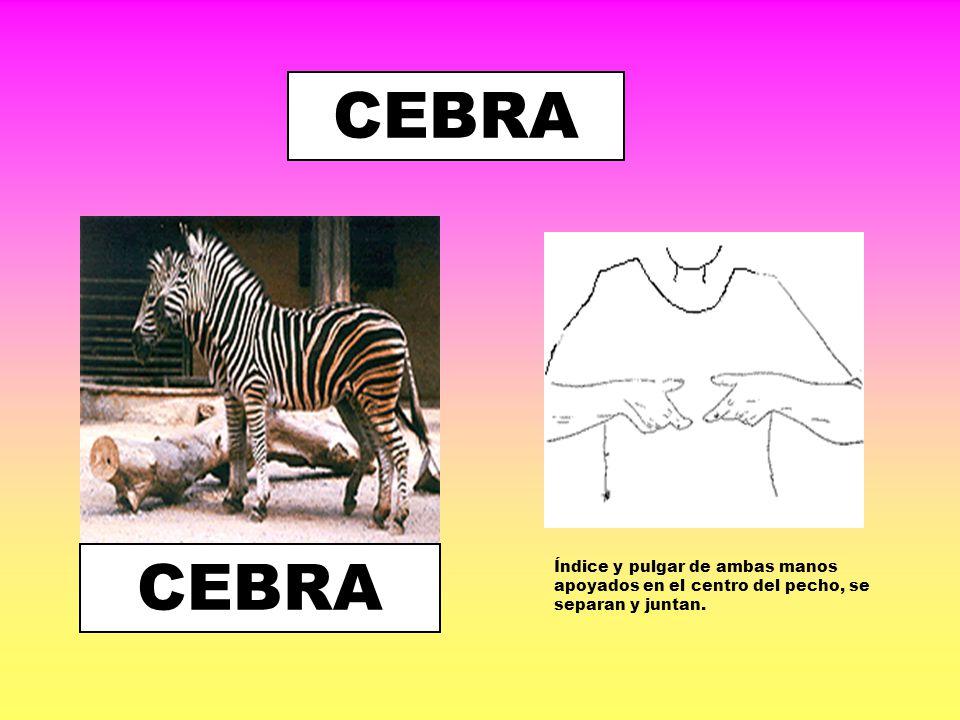 CARACOL Dedo índice perpendicular al cuerpo, gira en espiral.