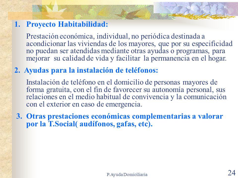 P.Ayuda Domiciliaria 23