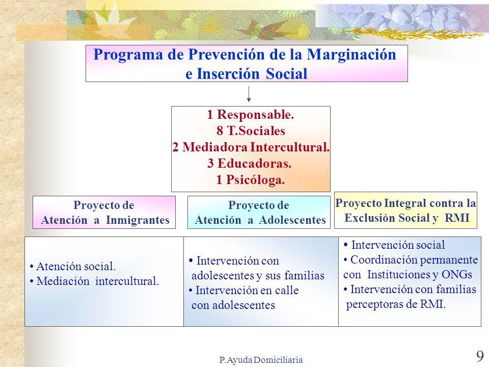 P.Ayuda Domiciliaria 9 Programa de Prevención de la Marginación e Inserción Social 1 Responsable.