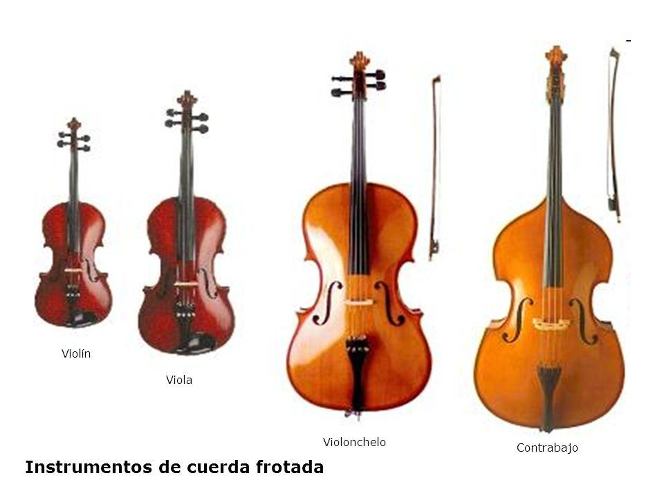 Violín Viola Violonchelo Contrabajo Instrumentos de cuerda frotada