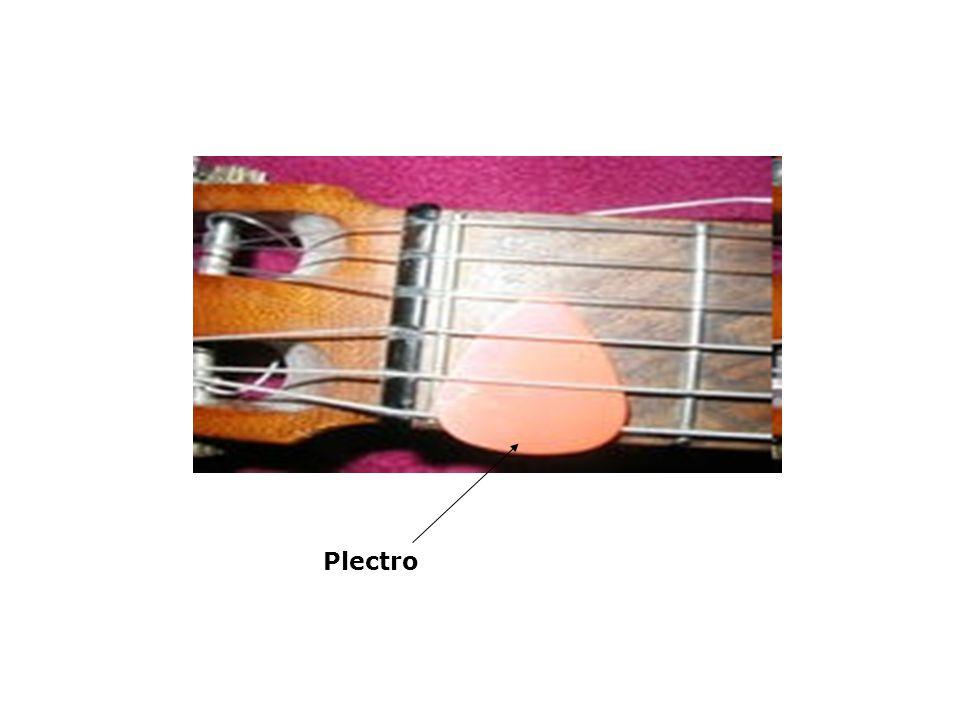 Plectro