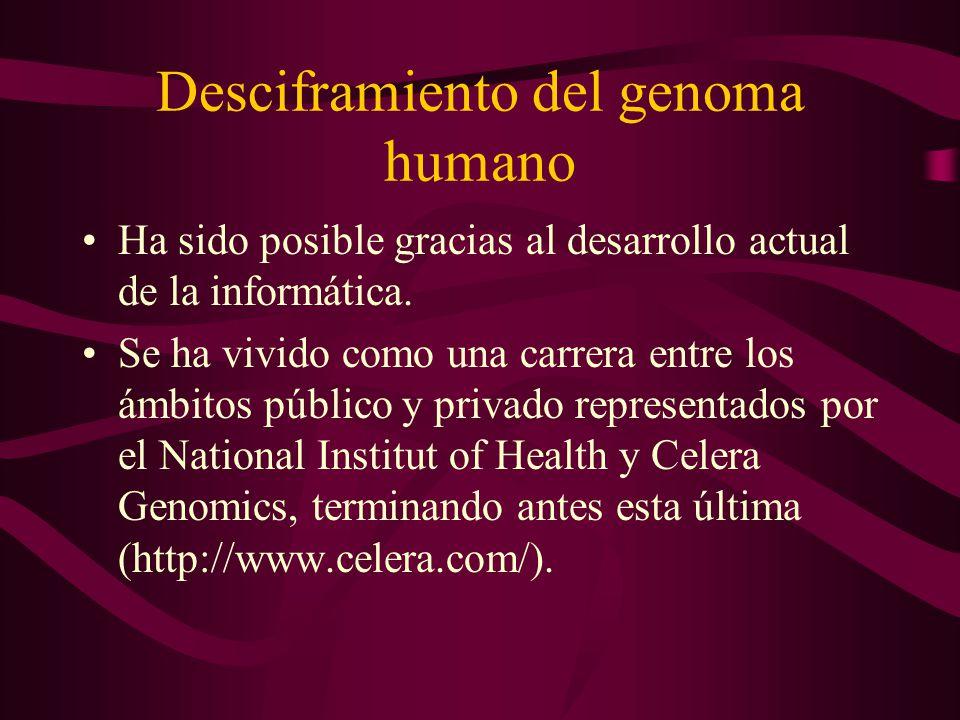 Desciframiento del genoma humano Ha sido posible gracias al desarrollo actual de la informática. Se ha vivido como una carrera entre los ámbitos públi