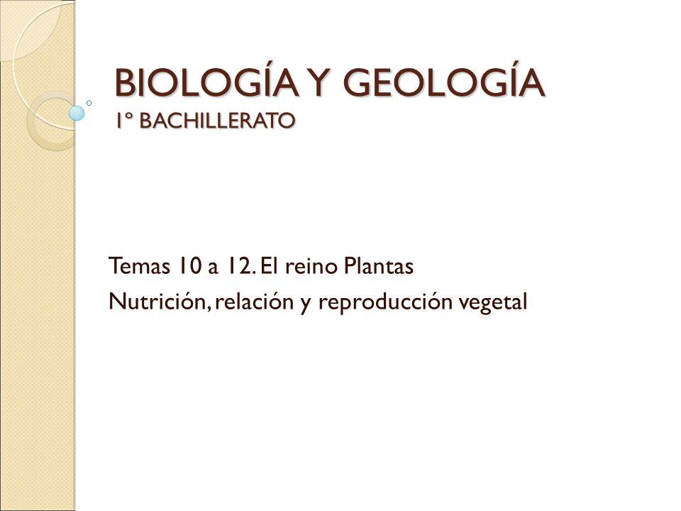 BIOLOGÍA Y GEOLOGÍA 1º BACHILLERATO Temas 10 a 12. El reino Plantas Nutrición, relación y reproducción vegetal
