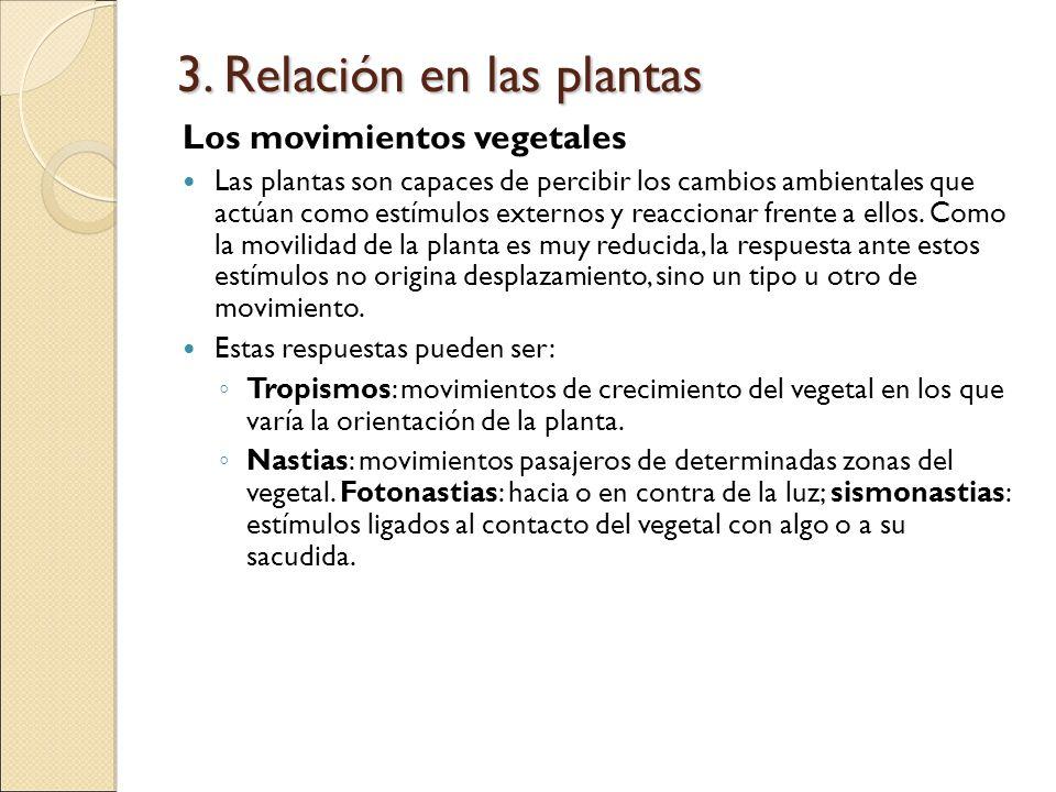 3. Relación en las plantas Los movimientos vegetales Las plantas son capaces de percibir los cambios ambientales que actúan como estímulos externos y