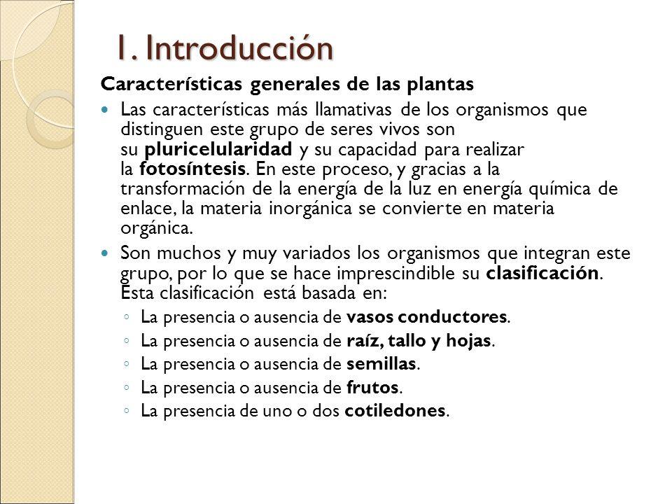 1. Introducción Características generales de las plantas Las características más llamativas de los organismos que distinguen este grupo de seres vivos
