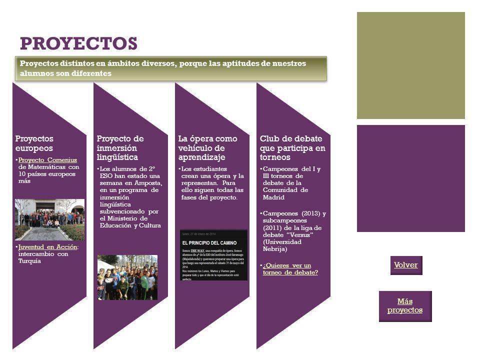 PROYECTOS Proyectos europeos Proyecto Comenius de Matemáticas con 10 países europeos másProyecto Comenius Juventud en Acción: intercambio con TurquíaJ