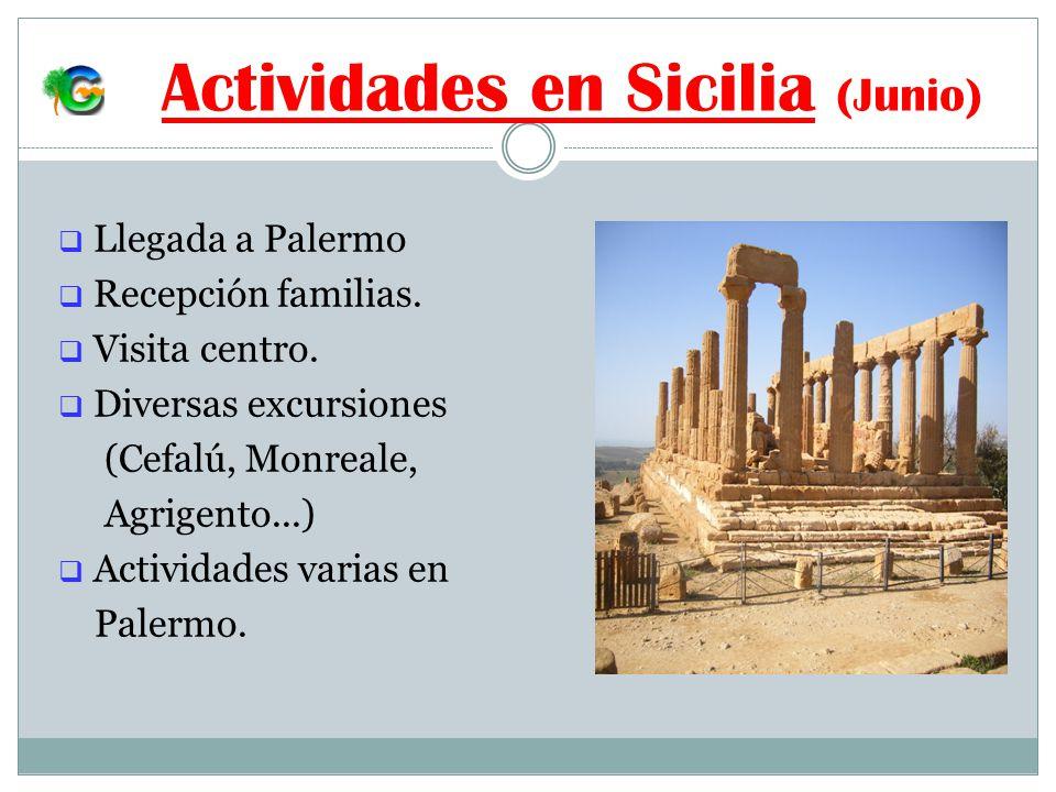 Actividades en Sicilia (Junio) Llegada a Palermo Recepción familias.