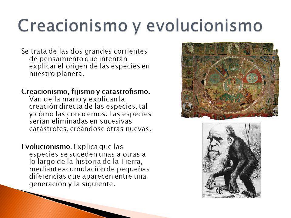 Se trata de las dos grandes corrientes de pensamiento que intentan explicar el origen de las especies en nuestro planeta. Creacionismo, fijismo y cata