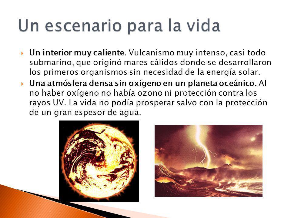 Un interior muy caliente. Vulcanismo muy intenso, casi todo submarino, que originó mares cálidos donde se desarrollaron los primeros organismos sin ne