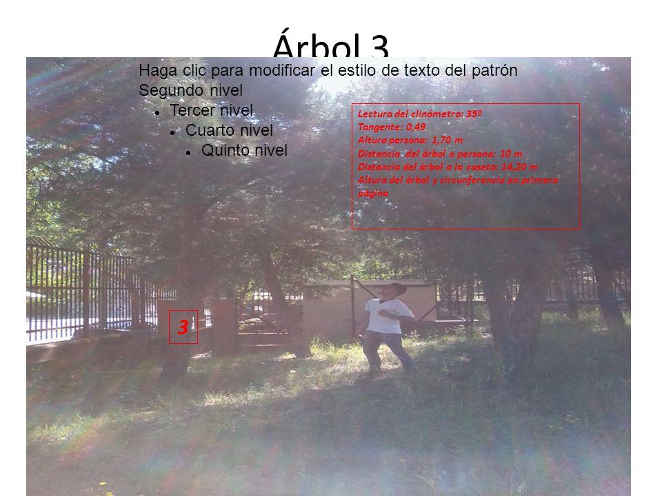 Árbol 3 Haga clic para modificar el estilo de texto del patrón Segundo nivel Tercer nivel Cuarto nivel Quinto nivel 3 Lectura del clinómetro: 35º Tangente: 0,49 Altura persona: 1,70 m Distancia del árbol a persona: 10 m Distancia del árbol a la caseta: 14,20 m Altura del árbol y circunferencia en primera página